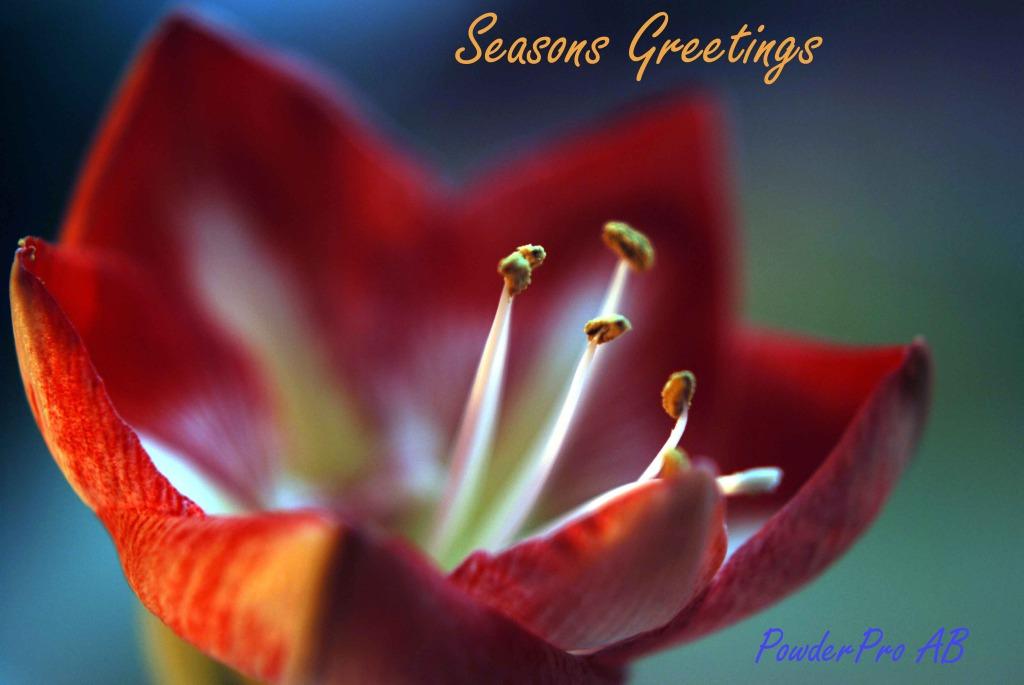 Season Greetings 2014