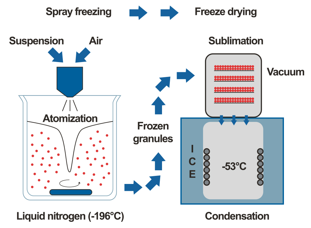 Instructions of spray freezing vs freeze drying
